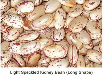 Light Speckled Kidney Bean